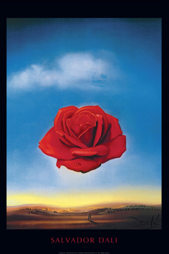 Dali Meditative Rose