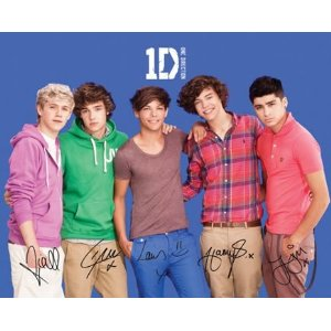 One Direction (small)