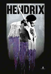 Hendrix Fabric Flag