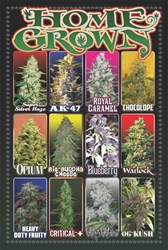 Home Grown weed, pot, reefer, marijuana
