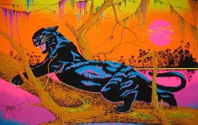 Jungle Cat Blacklight   wp