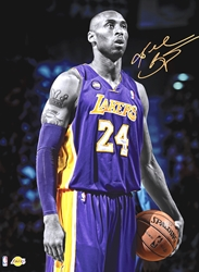 Kobe wp chicago bulls los angeles lakers