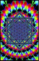 Sacred Geometry Blacklight