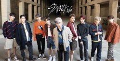 Stray Kids 12x24 kpop