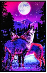 Timber Wolves Blacklight
