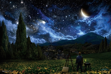 Van Goghs View starry night