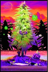 Weed Gnomes Blacklight
