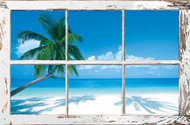 Window on the Tropics